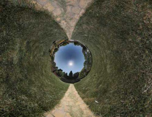 تور مجازی باغ گیاه شناسی